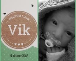 Vik is geboren